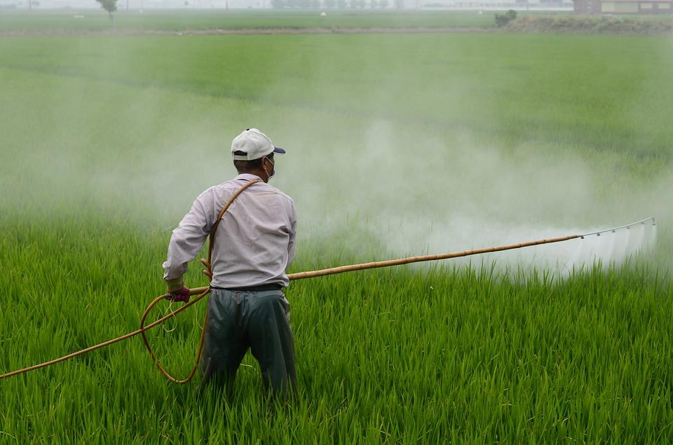 Épandage d'herbicide dont le glyphosate